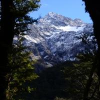 No.78 Mt Cook