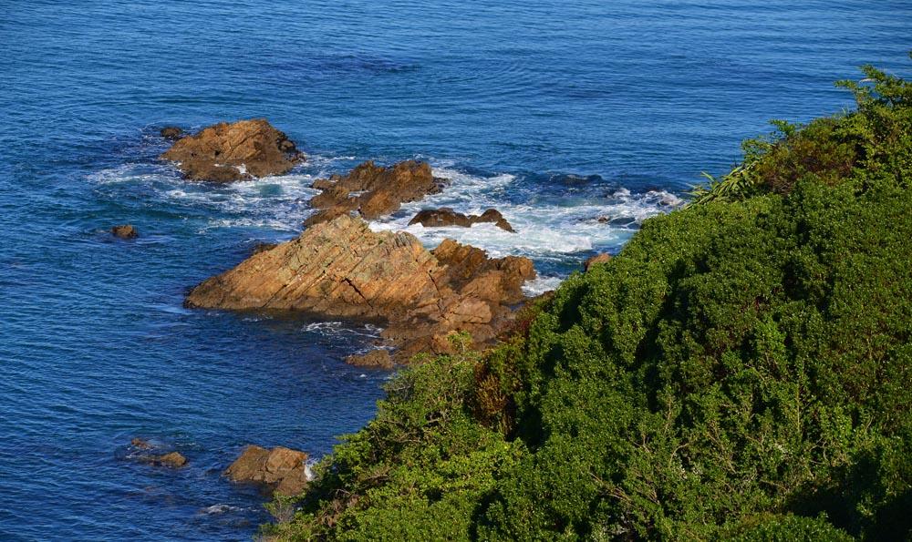 N0.26 Rocks of Matiu Island