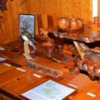 Museum exhibit of Kauri creations